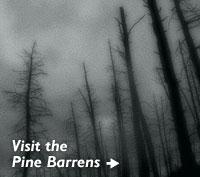 Visit Pine Barrens
